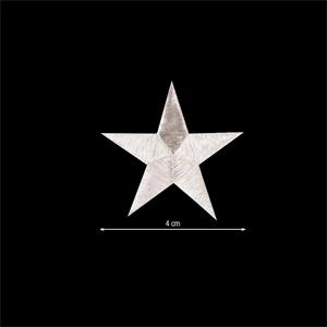 Aplicac.estrella 5puntas plata